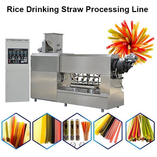 Edible Rice Straw Machine Extruder #1 image