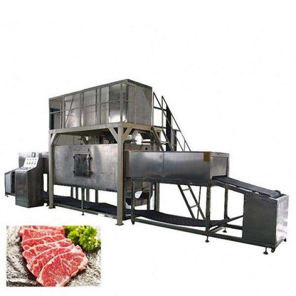 Tunnel Belt Conveyor Microwave Drying Thawing Defatting Machine for Meat #1 image
