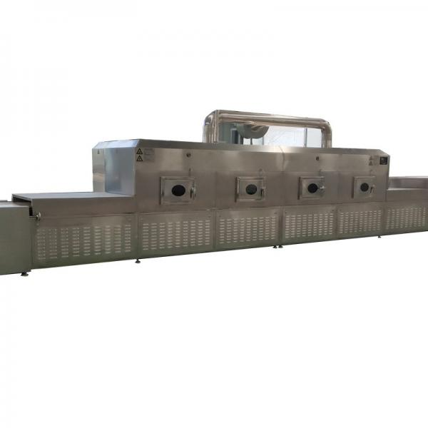 WL Industrial Food Vacuum Freeze and Drying Equipment #1 image