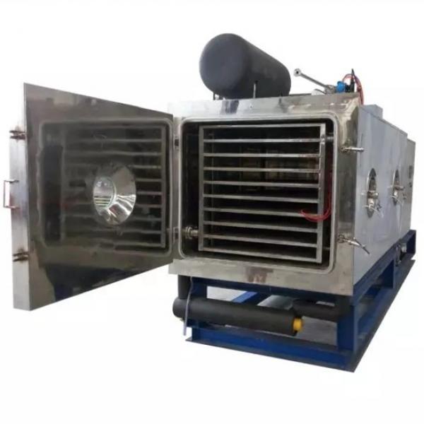 Vegetable Fruit Drying Equipment #1 image