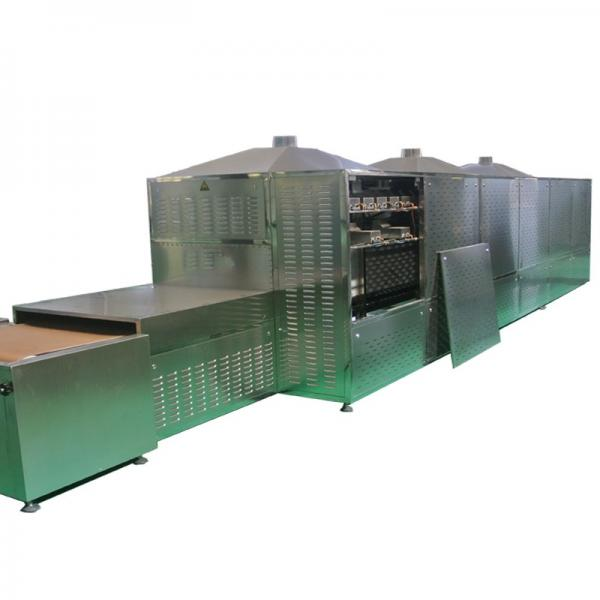 Multi-Functional High Quality Microwave Vacuum Drying Dryer Equipment for Food Processing #1 image