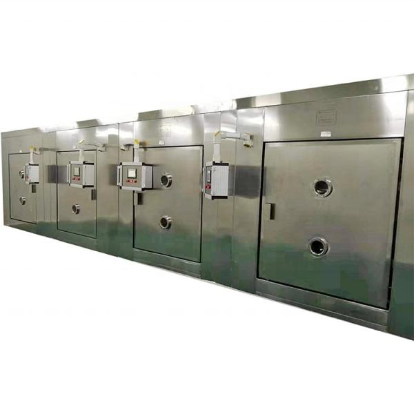 Commercial Continuous Industrial Microwave Tunnel Fruit Leaves Dryer #3 image
