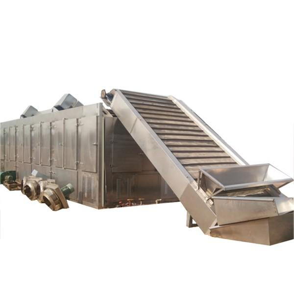 Automatic Heat Pump Industry Seafood Fruit Drying Machine Vegetable Dehydrator Mesh Belt Apple Banana Mango Fish Cucumber Hot Air Dryer #1 image