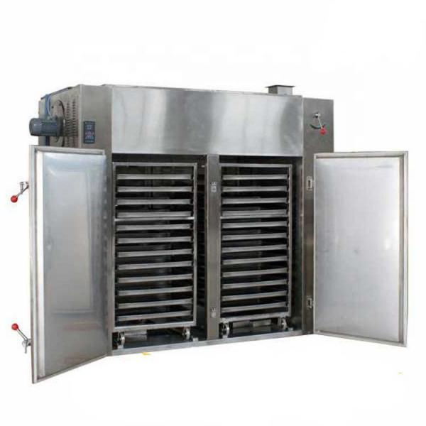 Commercial Fresh Vegetable and Fruit Dehydration Machine #1 image